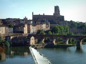 Albi - The River Tarn, the Pont-Vieux bridge, houses in the old town, trees, the Berbie palace and the Sainte-Cécile cathedral