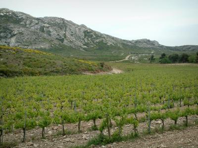 Alpilles mountain range