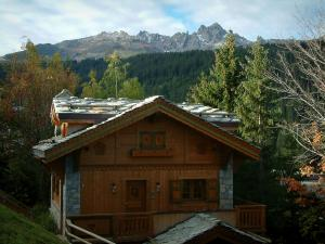 Alps landscapes in the Savoie - Wooden chalet in Courchevel with trees, forest and tops