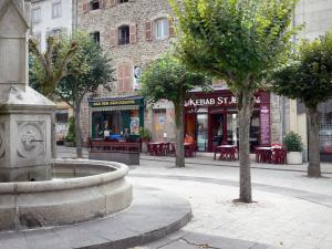 Ambert - Fountain on the Saint-Jean square, trees, café terrace and facades of houses
