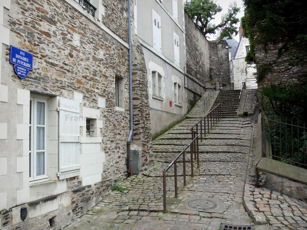 angers-12263_w1000