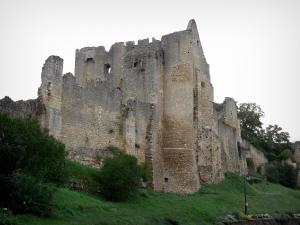Angles-sur-l'Anglin - Ruins of the fortified castle (medieval fortress)