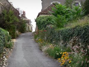 Angles-sur-l'Anglin - Narrow street of the village lined with flowers and houses