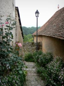 Angles-sur-l'Anglin - Roses (rosebush), flowers, lamppost and houses of the village