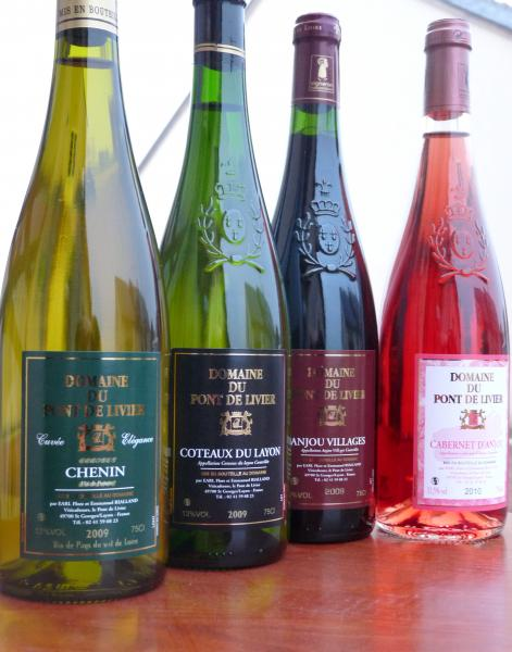 Anjou and Saumur wines - Gastronomy, holidays & weekends guide in the Maine-et-Loire