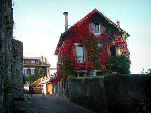 Annecy - Path leading to the museum-castle and houses covered with ivy in autumn