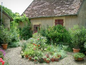 Apremont-sur-Allier - House and small garden featuring plants and flowers