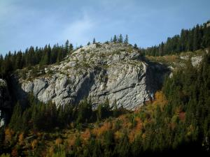 Aravis massif - Forest in autumn and rock face of the Aravis mountain range