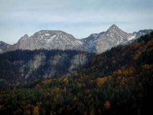 Aravis massif - Forest in autumn and mountains of the Aravis mountain range