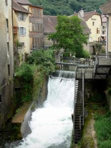 Arbois - Cuisance river, houses of the city and trees