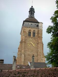 Arbois - Bell tower of the Saint-Just church and roofs of houses