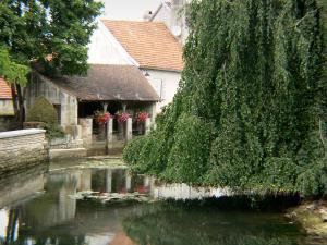Arc-en-Barrois - River Aujon, flower-bedecked wash-house and trees at the water's edge