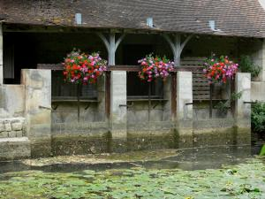 Arc-en-Barrois - Flower-bedecked wash-house on the banks of River Aujon