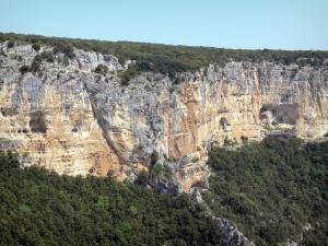 Ardèche gorges - Limestone cliffs and vegetation of the gorges