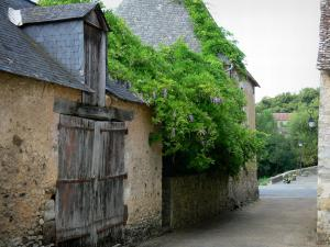 Asnières-sur-Vègre - Wistaria and facades of houses in the medieval village