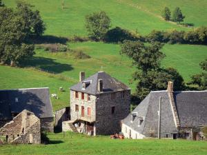 Auvergne Volcanic Regional Nature Park - Stone farmhouse, pasture and trees