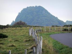 Auvergne Volcanic Regional Nature Park - Fence of a pasture and headland; in the Massif du Sancy (Monts Dore)