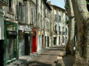 Avignon - Houses and trees of the Teinturiers street