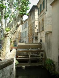 Avignon - Houses, plane trees and Sorgue river with a paddle wheel (Teinturiers street)