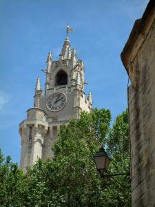 Avignon - Jacquemart tour (clock), house and tree