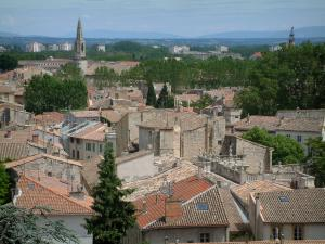 Avignon - From the esplanade of the Doms rock, view of the roofs of the houses in the city