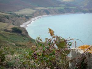 Baai van calgrain 2 afbeeldingen met hoge resolutie - Planter uitzicht op de baai ...