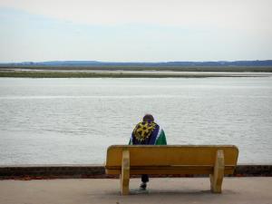 Baai van de somme 11 afbeeldingen met hoge resolutie - Planter uitzicht op de baai ...