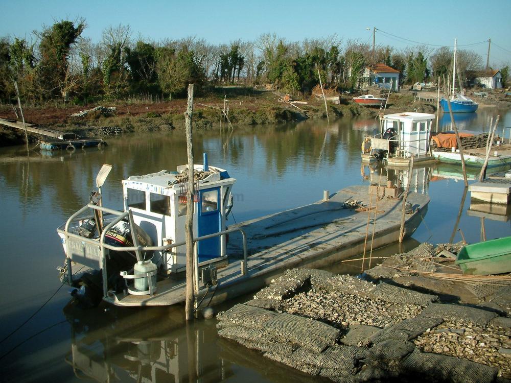 foto il bacino di marennes ol ron guida turismo e vacanze