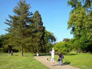 Bagatelle park - Stroll along the paths of the park planted with trees