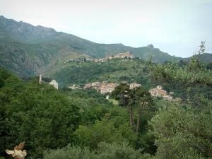Balagne region - Hilltop villages on a hill dotted with trees