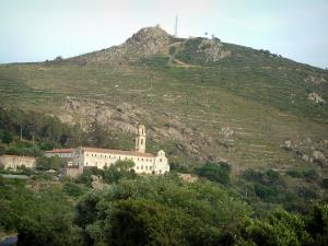 Balagne region - Corbara convent surrounded by trees