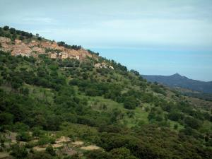 Balagne region - Village of Occiatana perched on a hill dotted with trees