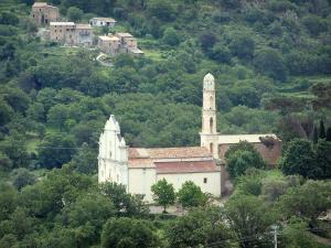 Balagne region - Church and houses surrounded by trees