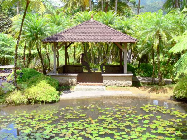 balata garden hut at the edge of the fish pond and palm trees of the - Garden Definition