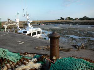 Barfleur - Port: quay with fishing nets, boats at ebb tide