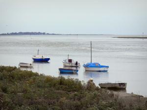 Bay of Somme - Boats on the water