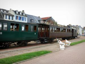 Bay of Somme - Small train of the Bay of Somme in Saint-Valery-sur-Somme