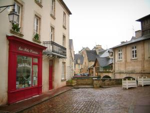 Bayeux - Houses, shop, lamppost and former fish covered market hall