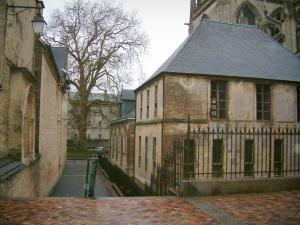 Bayeux - Buildings in the old city (medieval town) and tree