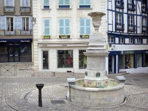 Bayonne - Facades and fountain of the Place Louis Pasteur square