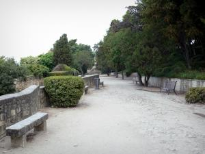 Beaucaire - Park of the castle featuring benches