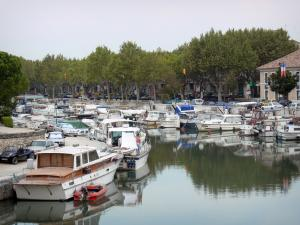 Beaucaire - Port with its boats moored to the quays, and sycamore (tree)