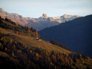 Beaufortain - Chalets, alpine pastures, trees of a forest in autumn and snowy tops