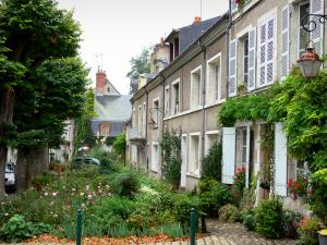 Beaugency - Houses, flowers, plants, rosebushes (roses) and trees