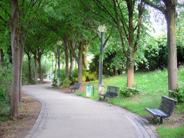 Belleville park - Shaded tree alley