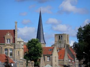 Bergues - Pointed tower and square tower of the ancient Saint-Winoc abbey, houses and trees