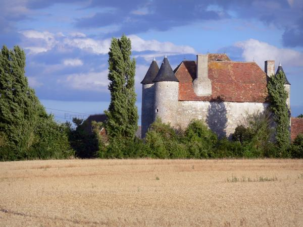 Berry landscapes - Pouzieux castle (in the town of Chatillon-sur-Indre), trees and field; clouds in the sky