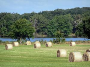 Berry landscapes - La Brenne Regional Nature Park: hay bales in a field, lake and trees along the water