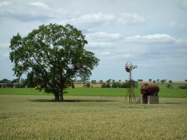 Berry landscapes - Wheat field with a tree and a windmill, trees in background, clouds in the sky