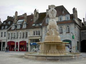 Besançon - Fountain, shops and houses of the Revolution square